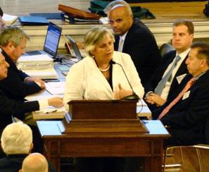photo of denise-garlick-testifying